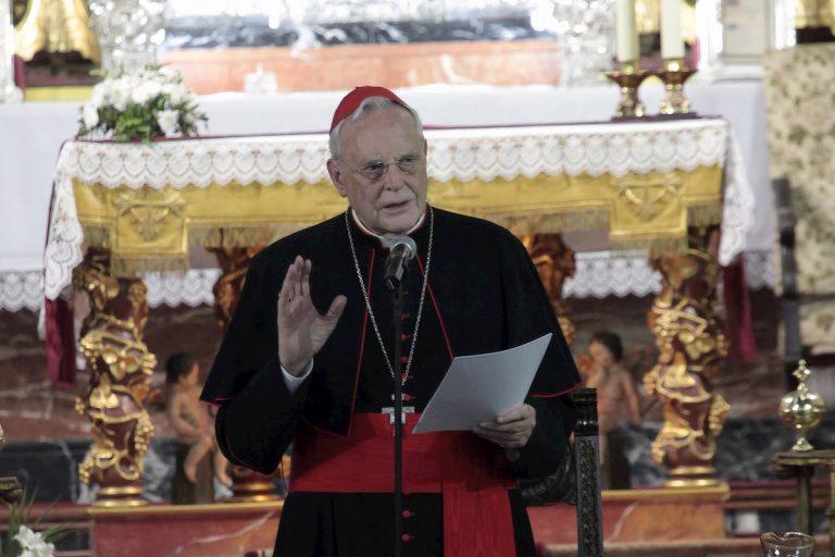 Cardenal Carlos Amigo Vallejo